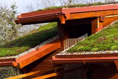 Green living roof on wooden building covered with vegetation Royalty Free Stock Images