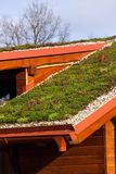 Green living roof on wooden building covered with vegetation Royalty Free Stock Photos