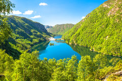 Green Fjords of Norway  Royalty Free Stock Image