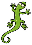 Green lizard with dots stock photos