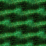 Green Lizard Skin Stock Images