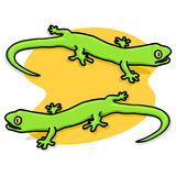 Lizards illustration. Green Lizards illustration; Two Geckos drawing Royalty Free Stock Image