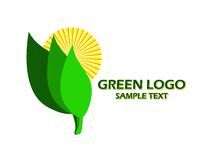 Green logo. With sun and green leaves over white Stock Photos