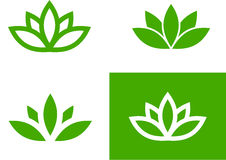Green lotus set Stock Photography