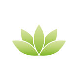 Green lotus symbol. Spa and wellness theme design element. Vector illustration Stock Photography