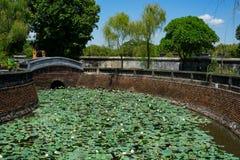 Lotus river in Hue Imperial City. Green lotus on the watter in river around Imperial City Hue stock image