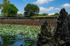 Lotus river in the Imperial City Hue. Green lotus on the watter in river around Imperial City Hue royalty free stock images