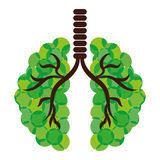 Green lungs of branches icon image Royalty Free Stock Images