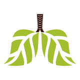 Green lungs branches with leaves image Royalty Free Stock Image