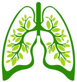 The green lungs Royalty Free Stock Photo