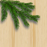 Green lush branch realistic fir trees and shade. Background with wooden texture. illustration Royalty Free Stock Photo