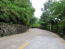 Curving road. Green Lush leaf Curving road stone Street wall royalty free stock photography
