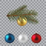 Green lush spruce branch. Fir branches. With Christmas balls. Green lush spruce branch. Fir branches. With Christmas balls Royalty Free Stock Photography