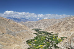 Green lush valley among desert mountains Stock Photo