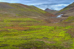 Green lush valley, Iceland. Lush green, but very cold valley in a mountainous area in Iceland Stock Photography