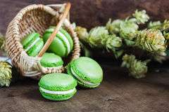 Green macarons on dark wooden background Royalty Free Stock Photos