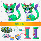 Green magic cat with toys and summer accessories Royalty Free Stock Photos