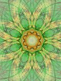 Green mandala. Abstract fractal background created with apophysis Royalty Free Stock Photo