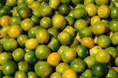 Green mandarin at fruit market Stock Photos