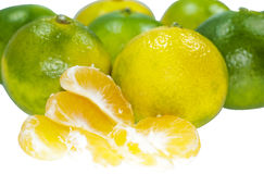 Green mandarin. Green and yellow mandarin isolated on white Stock Photography