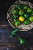 Green Mandarins Royalty Free Stock Photography