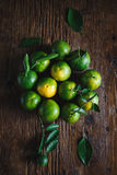 Green Mandarins Stock Photography