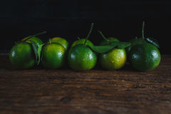 Green Mandarins Stock Images