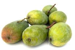 green mango Arkivfoto