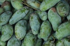 Green mango Royalty Free Stock Photo