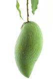 Green mango. A Closeup of Green Organic Mango on white background stock photography