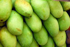 Green mango fruit Stock Photography
