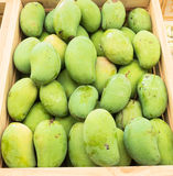Green mango fruit. For sale in market Stock Photography