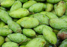 Green mango Royalty Free Stock Photography