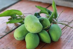 Green mango on the table royalty free stock image