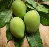 Green mango tropical fruit. Fresh green mango, tropical fruit Stock Photos