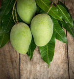 Green mango on wood background. Tropical fruit Stock Photos
