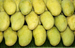 Green mangoes. A stack of green mangoes in the market Royalty Free Stock Images