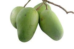 Green mangoes. Isolated on white background Stock Image