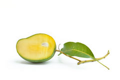 Green mangoes with leafs isolated on white Stock Photos