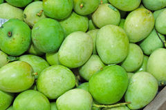 Green mangoes in the market Royalty Free Stock Photo