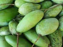 Green mangoes. Pic of many green mango Royalty Free Stock Images