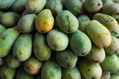 Green mangos Royalty Free Stock Image