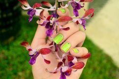 Green manicure with beautiful orchid flowers Stock Photo