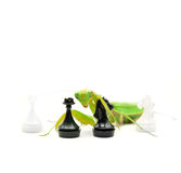 Green mantis with black knight chess piece on white background, Royalty Free Stock Photos