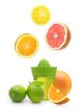 Green manual juicer and citrus fruit Stock Photos