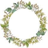 Green maple leaves. Leaf plant botanical garden floral foliage. Frame border ornament square. Aquarelle leaf for background, texture, wrapper pattern, frame or royalty free illustration