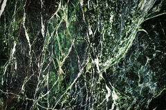 Green Marble Background Texture Stock Photography