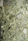 Green marble background and texture Stock Images