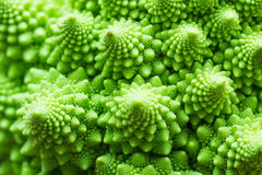 Green marco close up shot of a broccoli cabbage texture Stock Photo