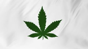 Green marijuana logo on a white background developing in the wind 2 in 1. Green marijuana logo on a white background developing in the wind computer animation stock video footage